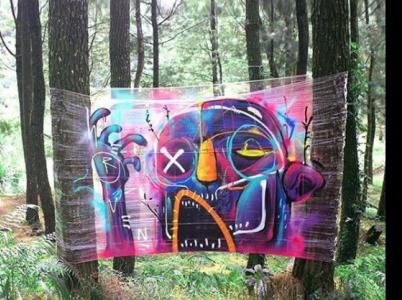 Kouzlo cello graffiti je i v jeho pomíjivosti. I běžná gráfka se různě předělávají a překreslují, tady stačí zmuchlat fólii.