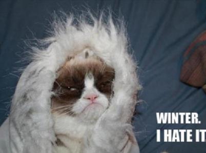 Nenávidíme zimu a nenávidíme otravné věci s ní spojené.