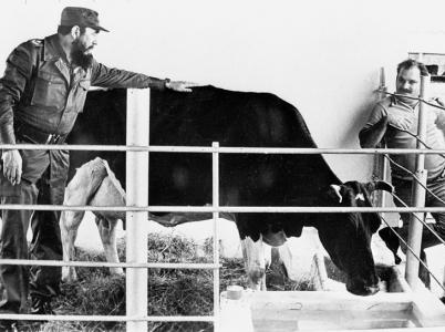 Komunistickou utopii sice nevybudoval, ale rekordně dojivou krávu se mu vypěstovat povedlo.