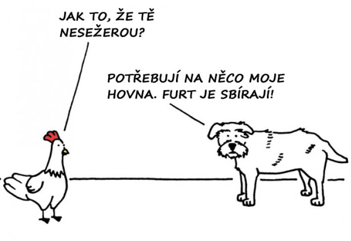 Kreslene Vtipy Strana 9 G Cz
