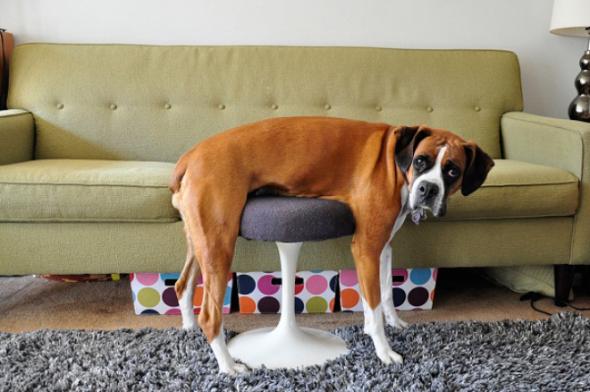 1) Lehnu si na stoličku, v klidu