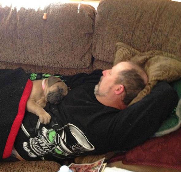 """1# """"Pes má být venku v boudě!"""" Dobře, vydrželo mu to tak 2 dny a už spolu od tě doby jen odpočívají na gauči..."""