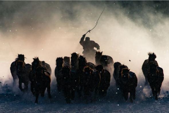 Výherce Grand Prize: Zimní jezdec na koni, Mongolsko