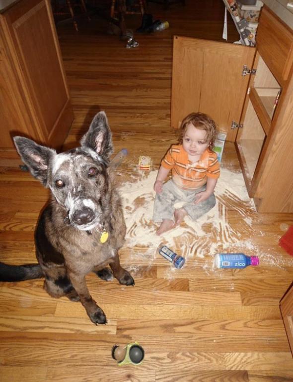 2# Z dítěte a psa se stanou kriminální parťáci