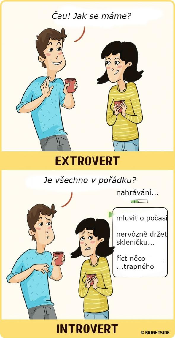 introverti dobré datování blurbs