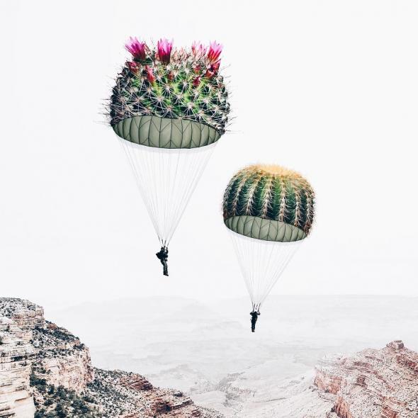 Padák jako kaktus? Tak pozor na hladké přistání!
