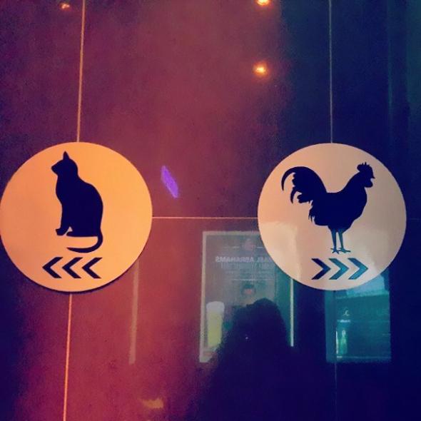 Kočky doleva, kohouti doprava! Tak, jak káže příroda!